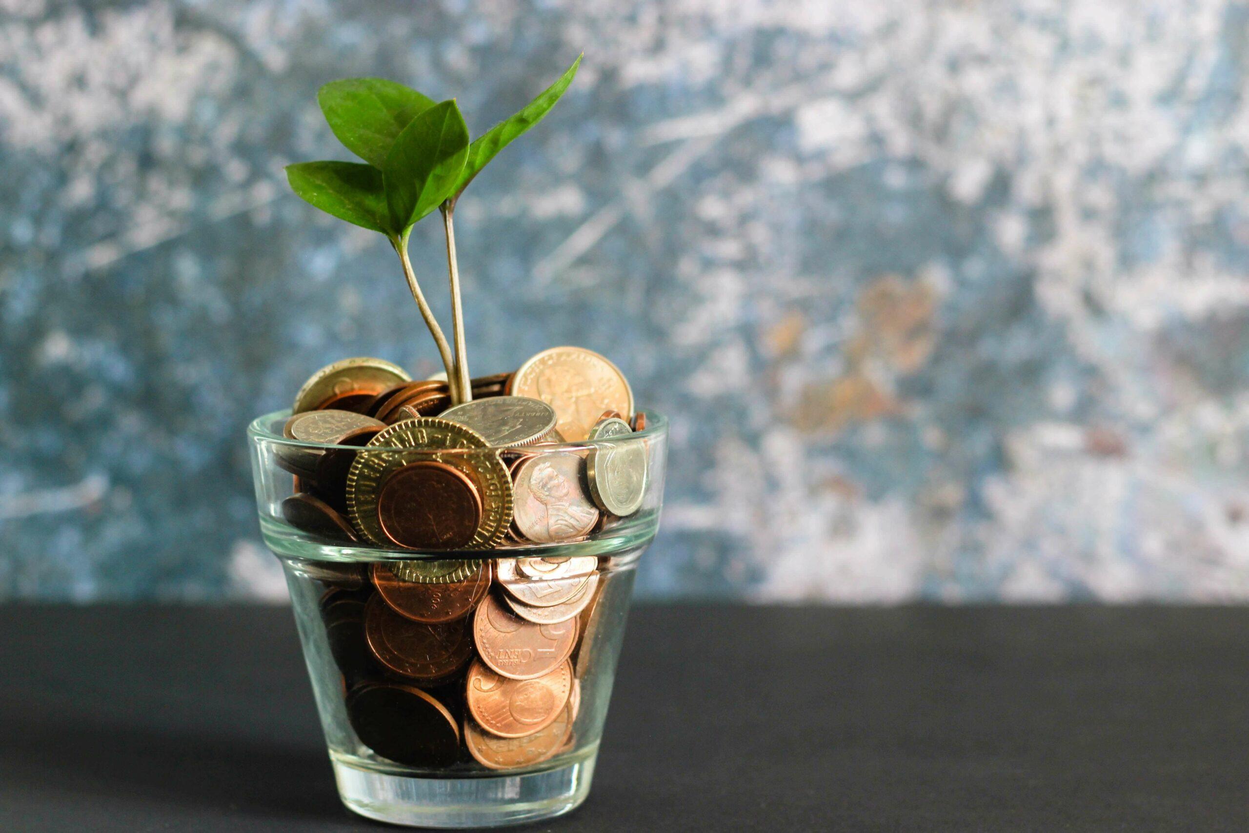 tax efficient money tree